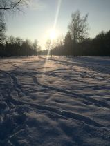 3518 150101 sun on snowfield