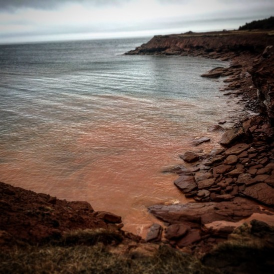 Cavendish Beach - North Rustico